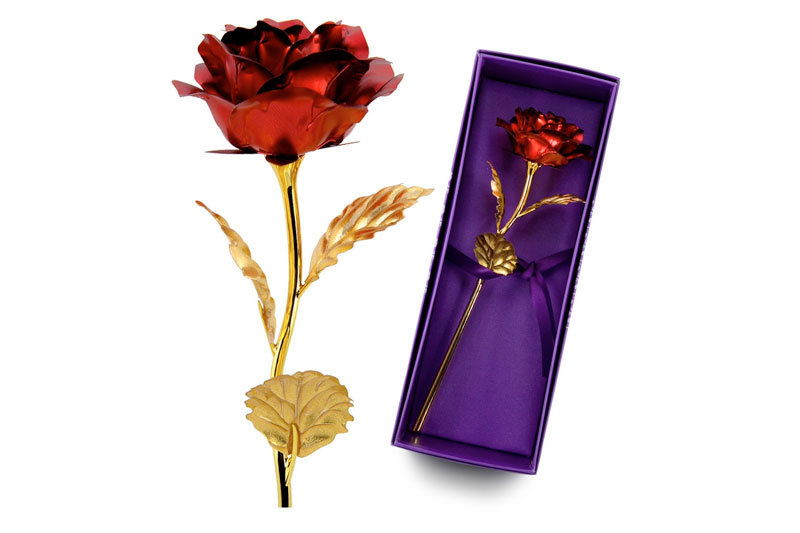 11 Women for Whom You Loved Pretty Red Rose Nice Girls Unique Gift for Mom