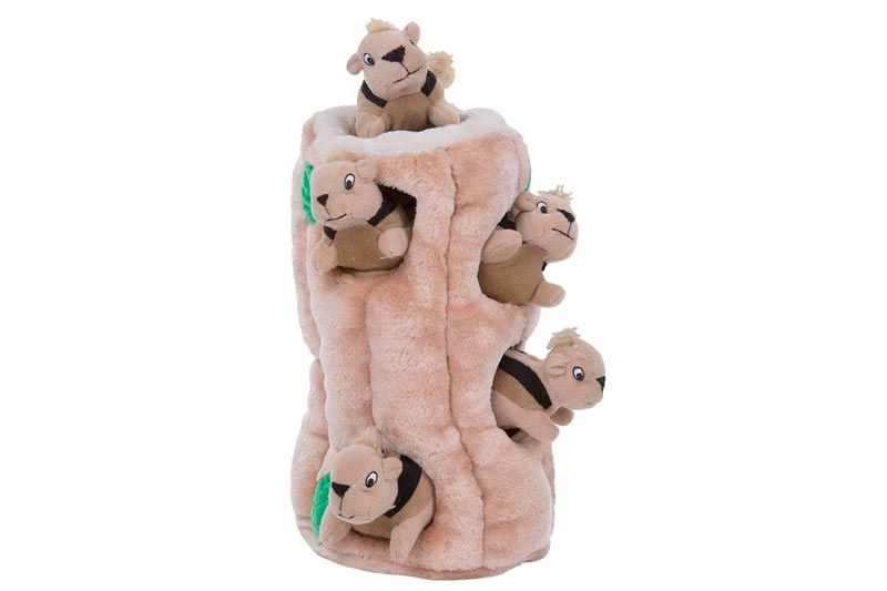 Outward Hound Hide a Squirrel Fun Hide and Seek Interactive Puzzle Plush Dog Toy by, 7 Piece, Ginormous
