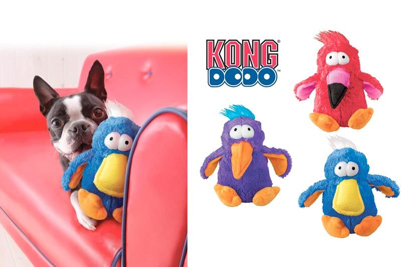 KONG Dodo Bird Dog Toy, Assorted