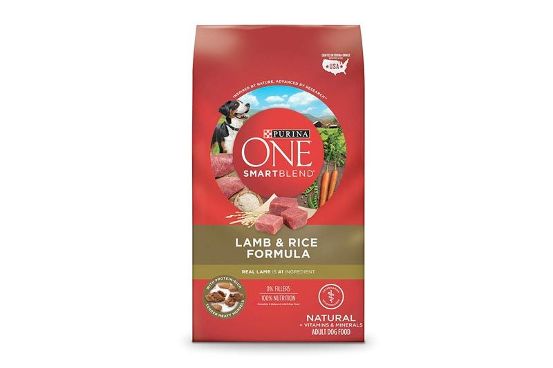 Purina ONE Smart Blend Adult Dry Dog Food