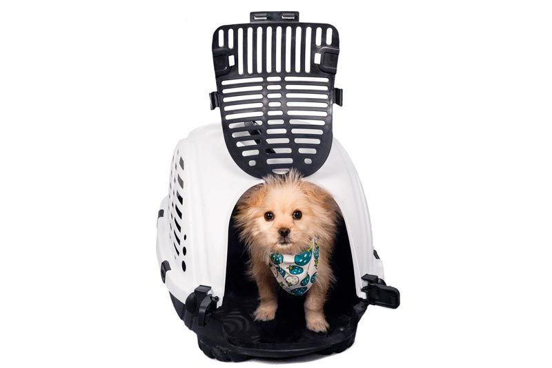 Favorite Cart Travel Portable Small Animal Cat Dog Pet Carrier