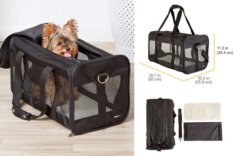Top 10 Best Small Animal Carriers to Carry Pets in Review
