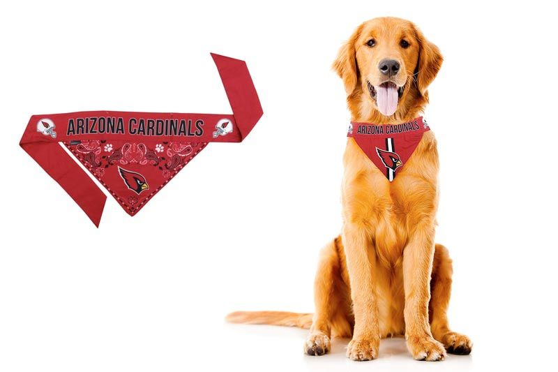 NFL Team Dog Bandana