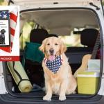 Top 10 Best Sports Fan Pet Bandanas for Dogs in Review