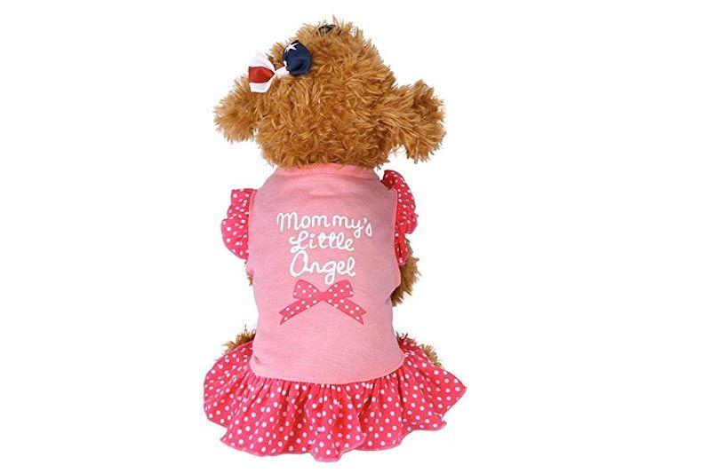 Boomboom Pet Dog Clothes, Cute Fly Sleeve Pet Dress for Puppy Small Dog Cat