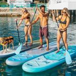 Top 10 Best Adjustable Stand Up Paddles for Water Sports in Review