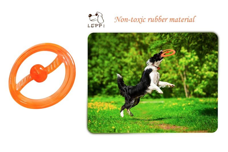 Top 10 Best Dog Flying Discs to Play with Your Dog in Review 2018