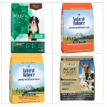 Best Dry Dog Food for Puppies : 10 Reviews, Organic, Grain Free